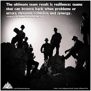 The ultimate team result is resilience: teams that can bounce back when problems or errors threaten cohesion and synergy. - Leading in the Wildland Fire Service, p. 55)