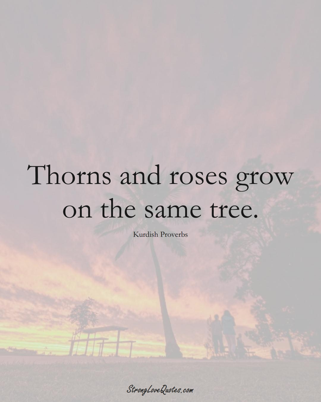 Thorns and roses grow on the same tree. (Kurdish Sayings);  #aVarietyofCulturesSayings