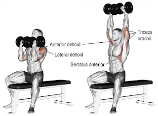 Top-5-Exercises-To-Build-Shoulders, Arnold-Press