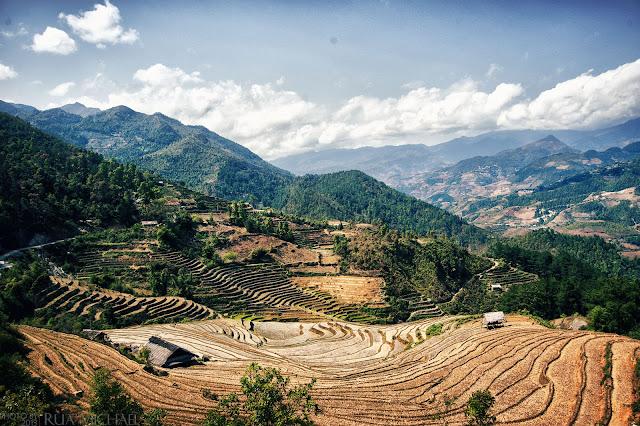 Terraced Fields Dế Xu Phình