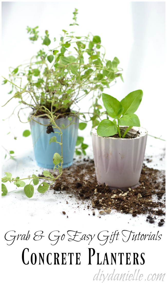 Easy Concrete Planters