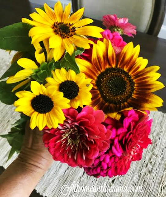 flowers-blossoms-zinnias-sunflowers-Jemma