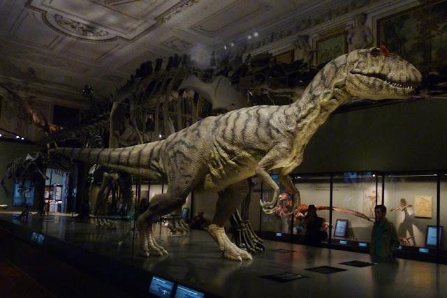 museu de História Natural
