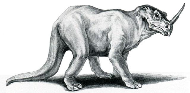 Emela-Ntouka