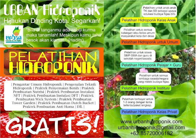 urban farming, urban hidroponik, pelatihan hidroponik