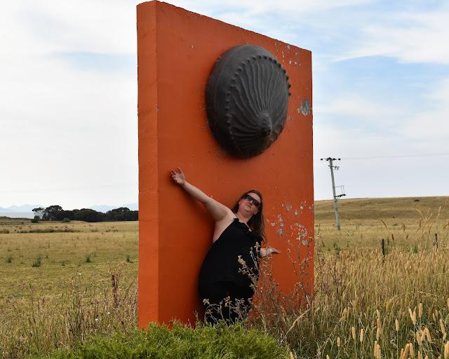 BIG Abalone Shell in Swansea   Swansea Public Art
