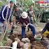 Pembangunan Gedung Baru PSHT Cabang Lampung Barat Dimulai