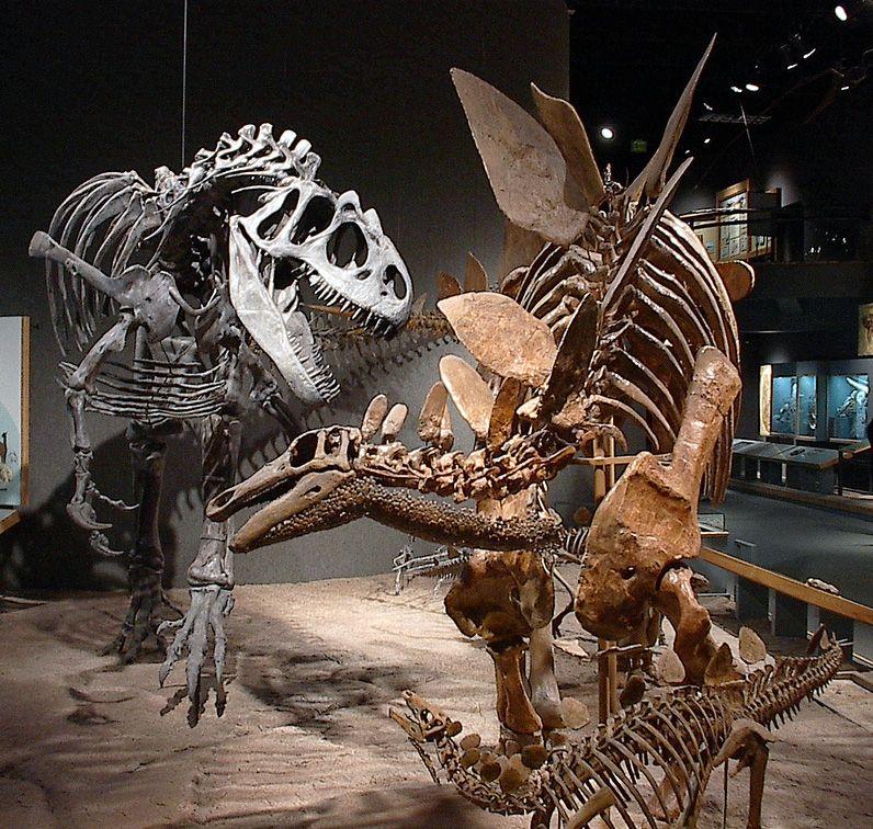 Blog Misteri Tesla: Sejarah Dinosaurus