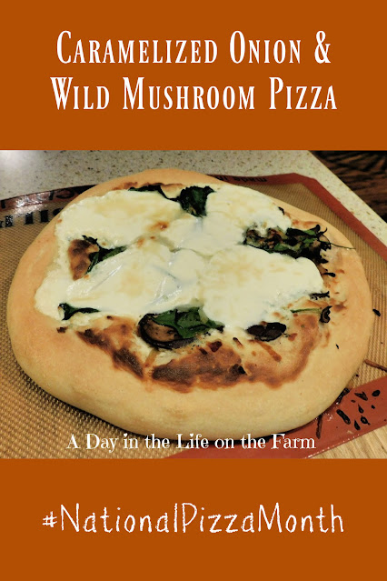 Wild Mushroom Pizza with Caramelized Onions  pin