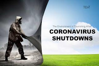 Apres coronavirus, Covid-19, Le vaccin vert ?