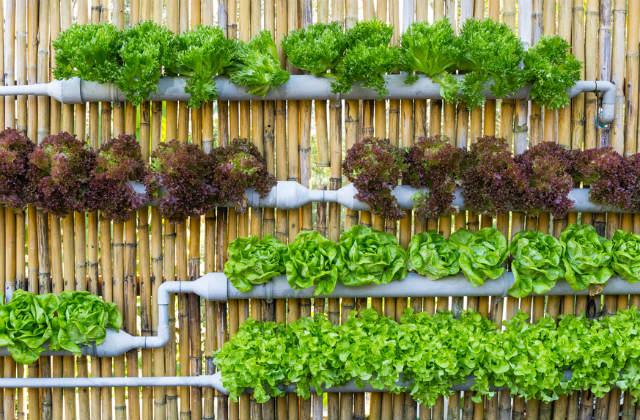 huerto urbano vertical con tubos reciclados
