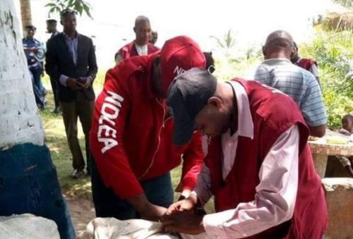 NDLEA seizes 3.3 metric tons of drugs across Nigeria