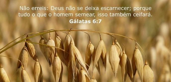 Não erreis: Deus não se deixa escarnecer; porque tudo o que o homem semear, isso também ceifará.