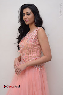 Actress Neha Hinge Stills in Pink Long Dress at Srivalli Teaser Launch  0003.JPG