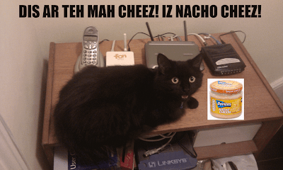 Funny lolcat picture featuring black cat and nacho cheese