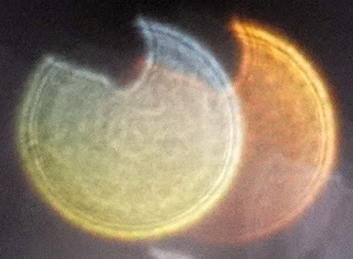yellow and orange notched orbs