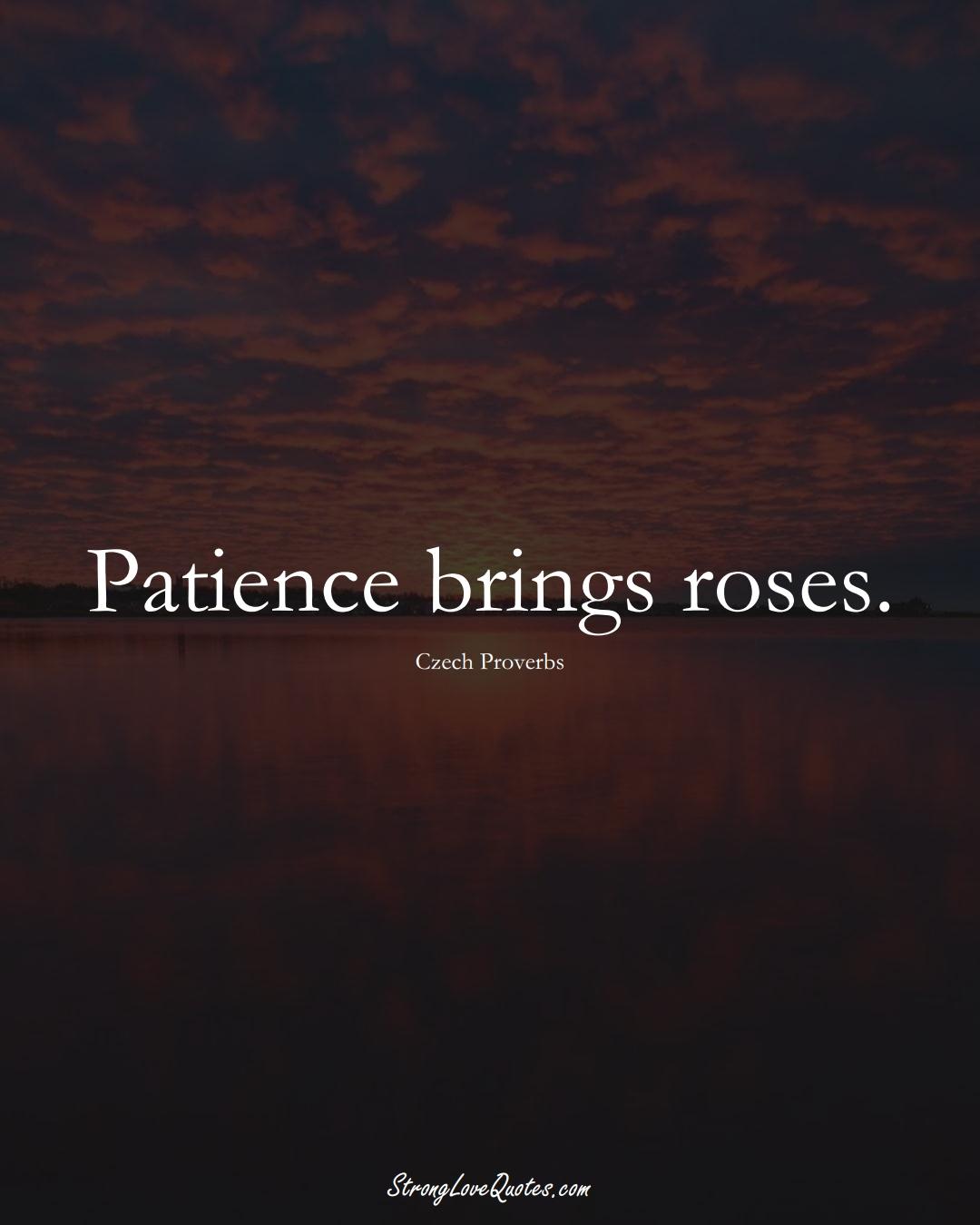 Patience brings roses. (Czech Sayings);  #EuropeanSayings