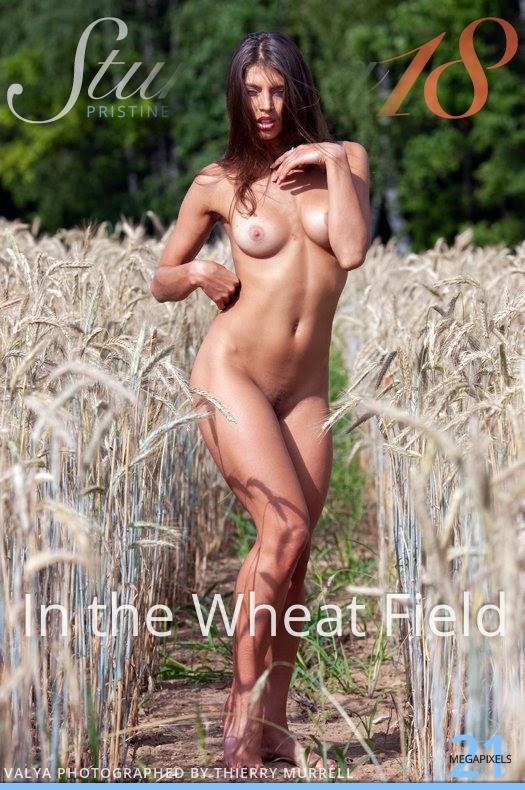 [Stunning18] Valya - In The Wheat Field