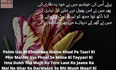 tehzeeb hafi poetry urdu