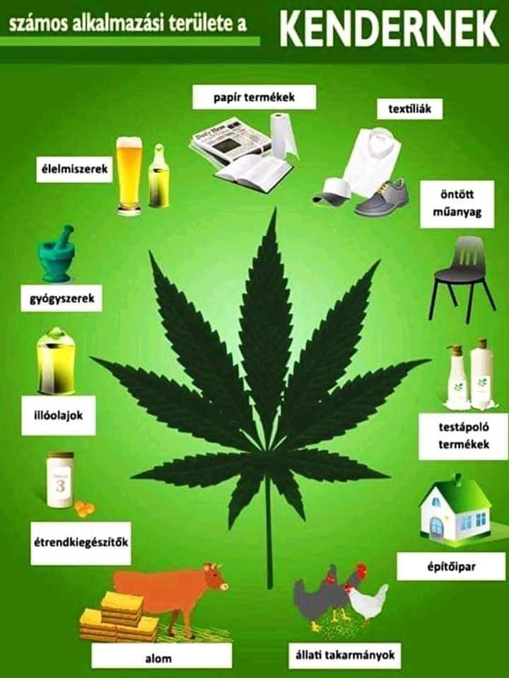 A marihuána hatása a testre - Metasztázisok, Marihuána zsír veszteség