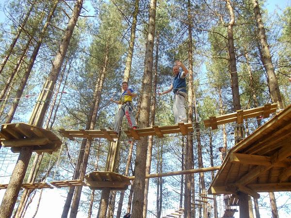 Tree Top Junior At Go Ape