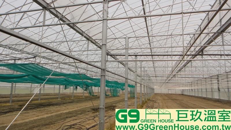 32.圓鋸鋼骨加強型溫室結構每一排水槽H鋼支柱連接C型鋼外觀