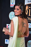 Varalakshmi in Cream Saree Sleeveless Backless Deep Neck Choli at IIFA Utsavam Awards March 2017 018.JPG