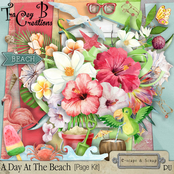 FREEbie #1:  A Day at the Beach Cluster from TraceyB Creations