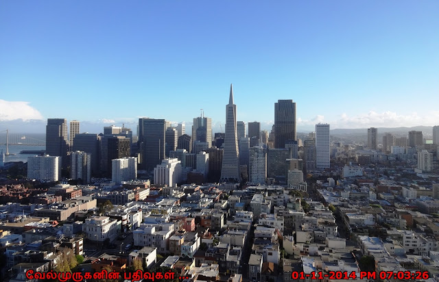 San Francisco Downtown View