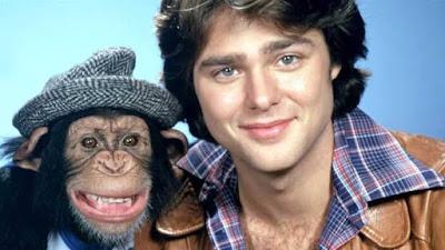 bj and the bear monyet yang terkenal di dunia