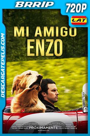 Mi amigo Enzo (2019) HD 720p BRRip Latino – Ingles