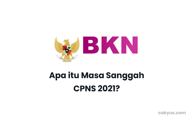 Apa Itu Masa Sanggah CPNS 2021?