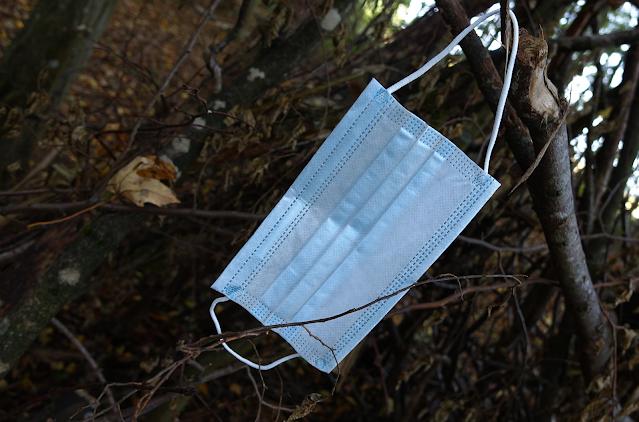 A foto mostra uma máscara descartável branca presa em galhos de árvores. Os galhos são marrons e estão todos juntos e emaranhados. No fundo se vê o chão coberto de folhas e terra.