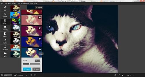 Cara Mempercantik Foto atau Gambar Tanpa Photoshop