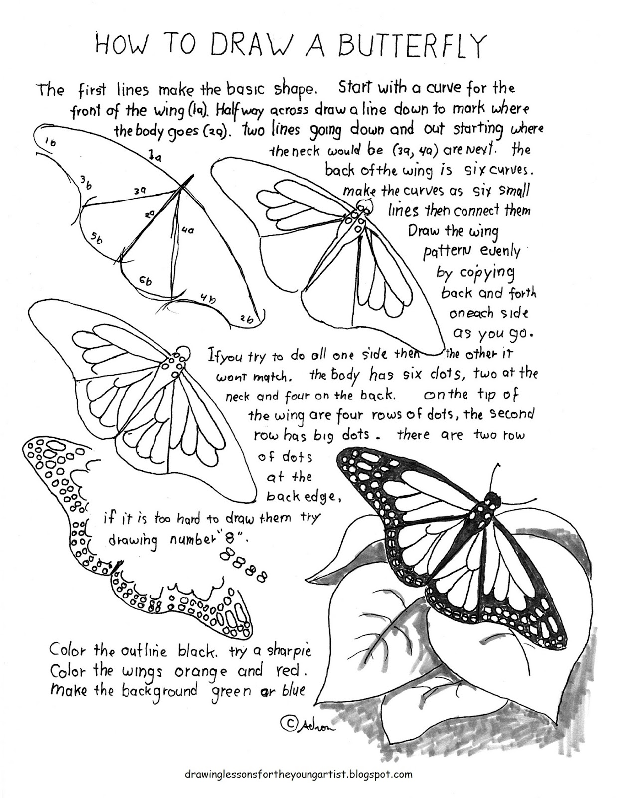 How To Draw Worksheets For The Young Artist How To Draw A Monarch Butterfly Lesson And Worksheet