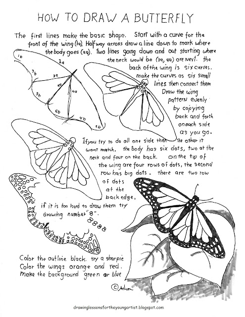 how to draw a bitterfly