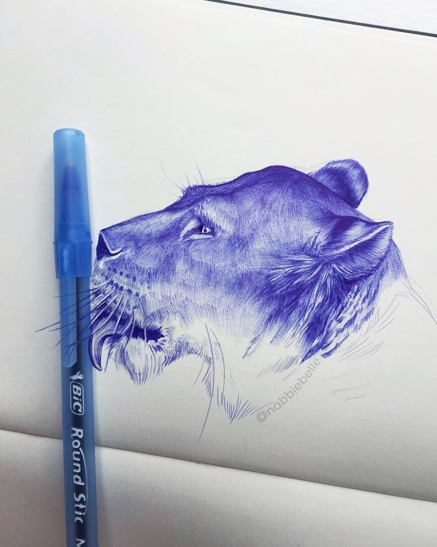 10-Lioness-Annabelle-Marie-Inked-Animals-Drawn-in-Ballpoint-Pen-www-designstack-co