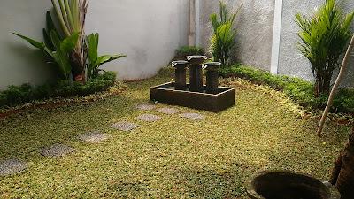 Tukang Taman Murah Cibitung