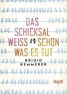 Das Schicksal weiss schon was es tut ; Brigid Kemmerer ; Dragonfly ; HarperCollins