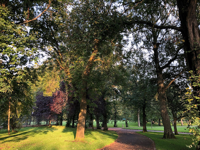 lots of trees around footpath in park, leaves changing colour