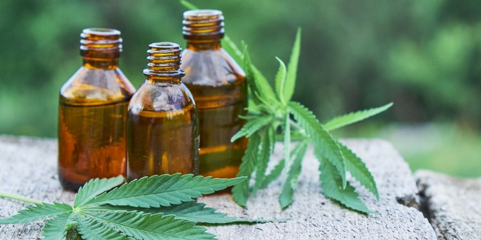 How to Get the Word Out About your CBD Brand on Web