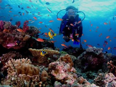 islas fiji  turismo que ver