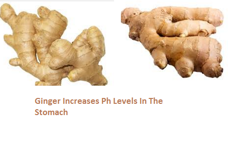 Ginger Increases Ph Levels In The Stomach: