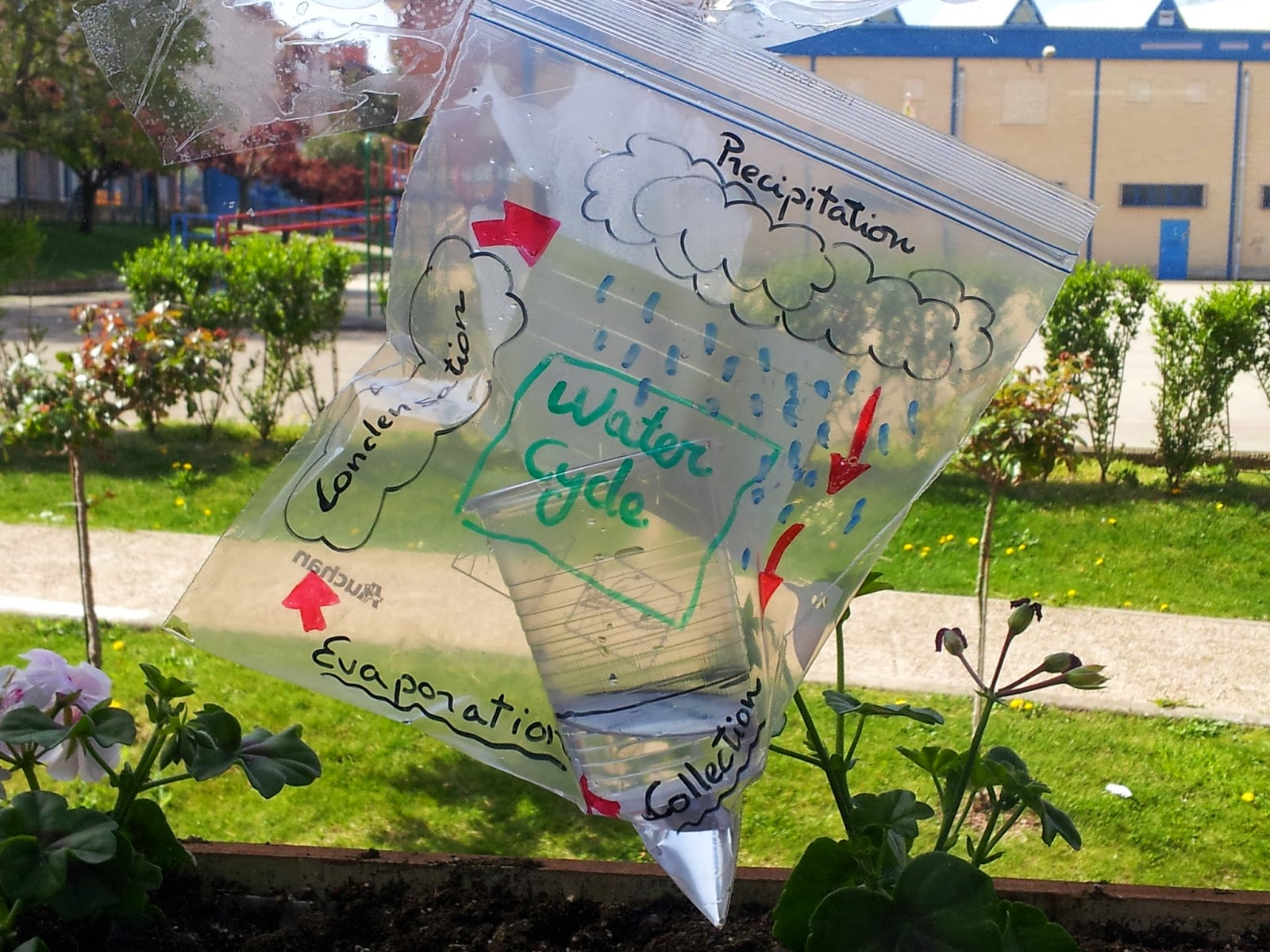 San Prudencio English Corner 1 Water Cycle Experiment