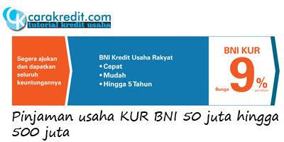 Pinjaman usaha KUR BNI 50 juta hingga 500 juta ...