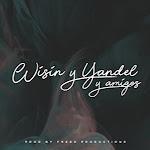 Wisin & Yandel - Wisin & Yandel y Amigos Cover