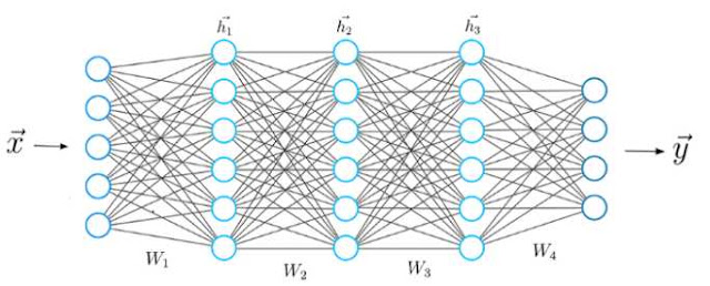 Architecture of Neural Networks