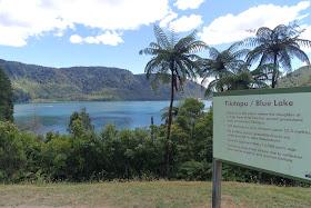 Lake Tikitapu Lake Rotokakahi