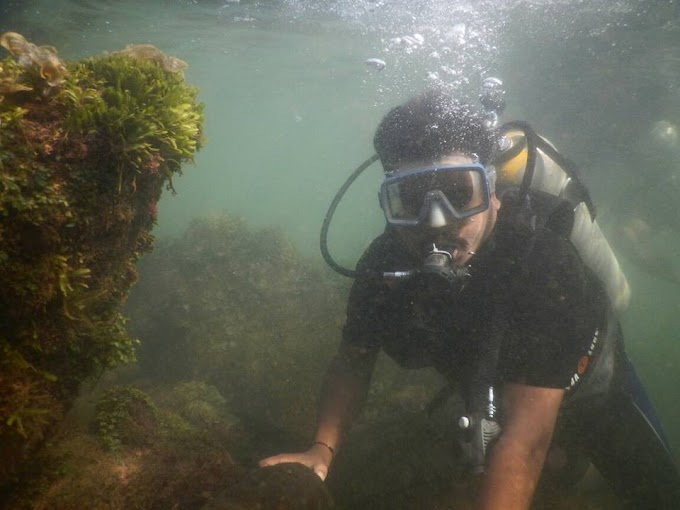 Tarkarli Beach Scuba Diving