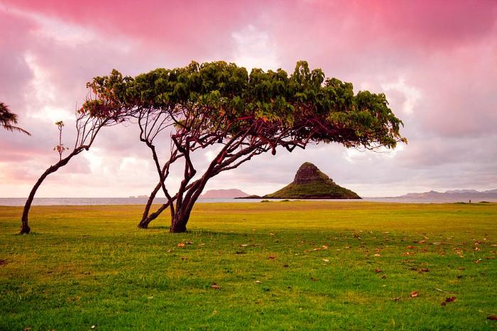Красоты Гавайских островов. Фотографии. Sean Davey 3